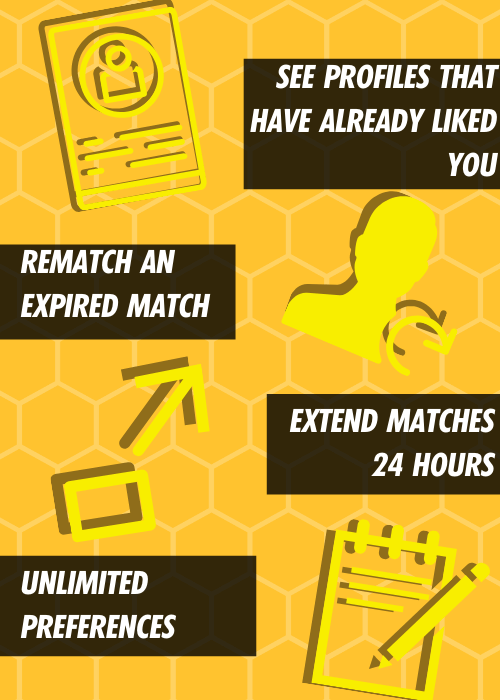 Bumble Boost Features and Benefits