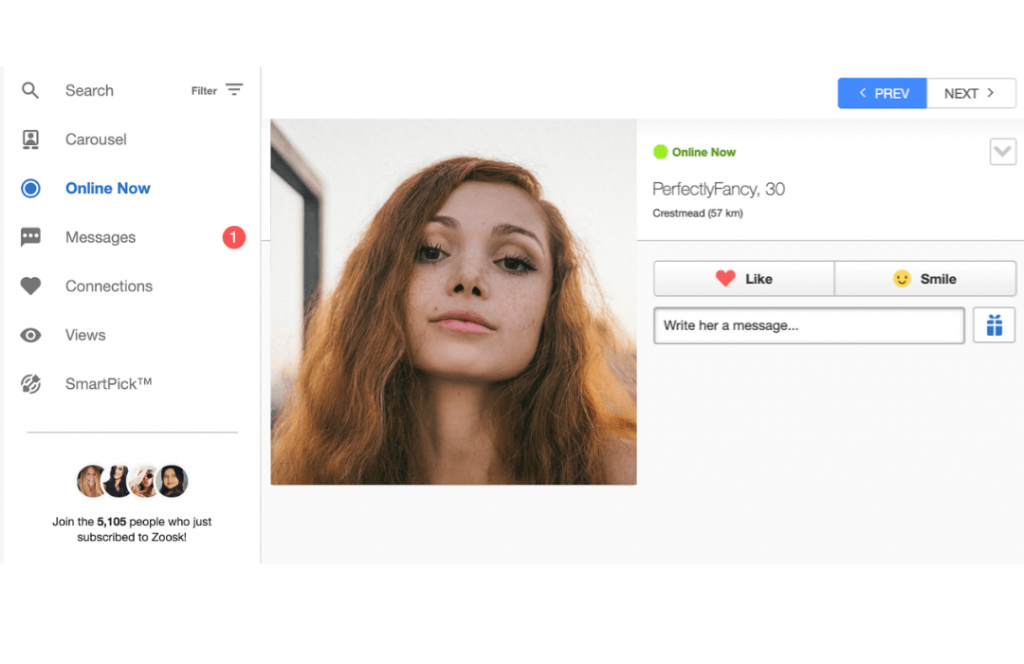How Does Zoosk Work? Online Now