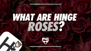 What Are Hinge Roses_ Featured Image