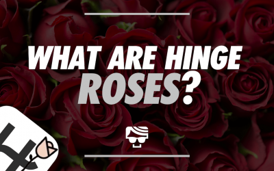 What is the Rose on Hinge? How Hinge Roses Work In 2021