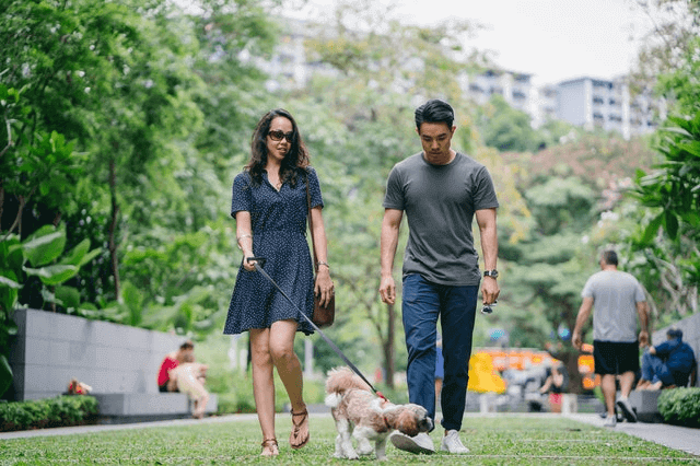 Is A Dog Walk A Good First Date - Couple Walking Dog at the park